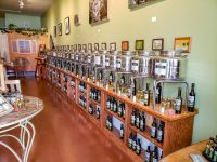 la-terra-natural-oils-shopping-savannah-local-food-store-savannahga-travel-20180518_134316.jpg